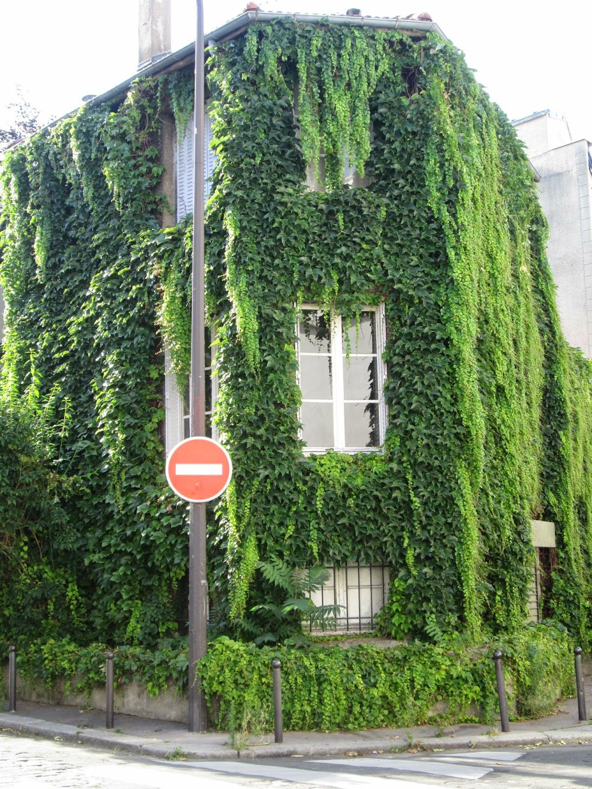 Paris Wall Gardens