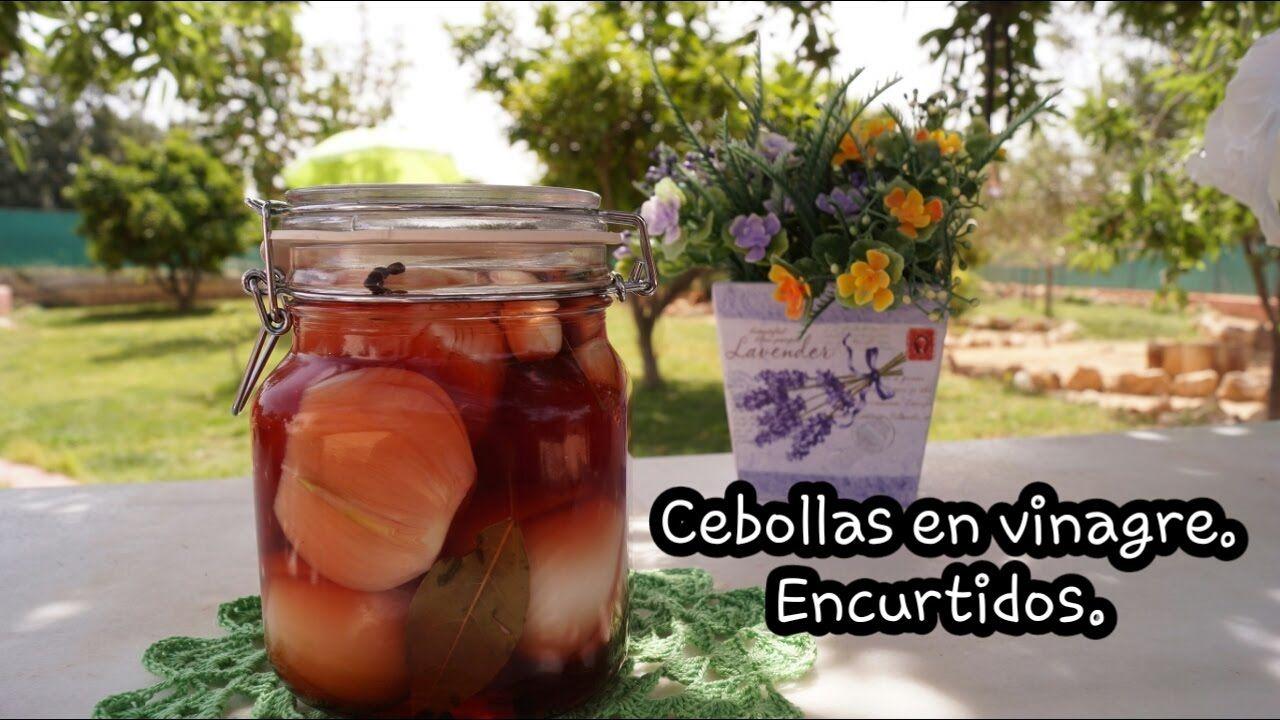 Cebollas Encurtidas En Vinagre Receta Casera Cebollas En Vinagre Cebollas Encurtidas Cebolla