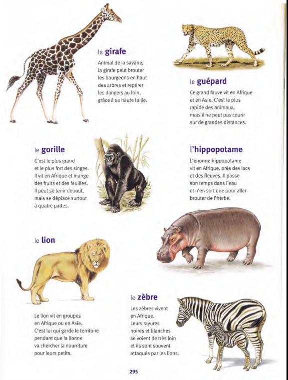 animaux des pays chauds 2 / Larousse des Maternelles | Africa ...