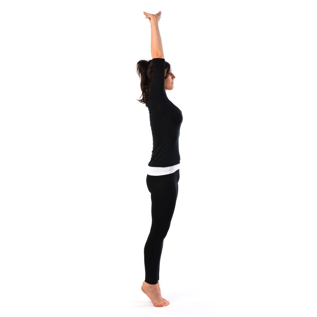 Try Out The 10 Yoga Poses To Defeat Belly Fat - 365 Fitness &…