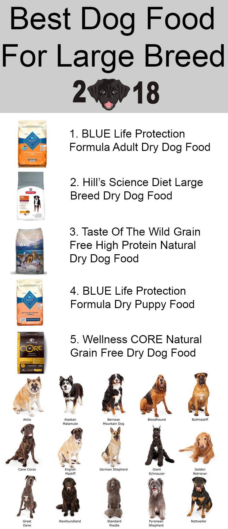 10 Best Healthiest Dog Foods For Large Breed Dogs In 2021 Dog Food Recipes Large Breed Dog Food Best Dog Food