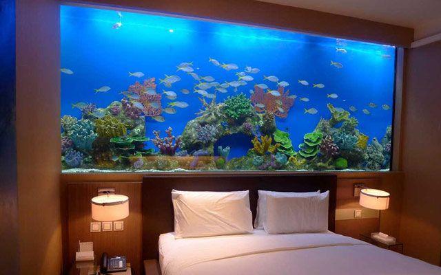 Ideas para decorar con acuarios en casa 17 en 2019 - Pecera de pared ...