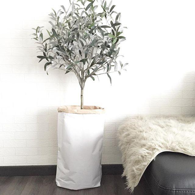 sac en papier en guise de cache pot home green home. Black Bedroom Furniture Sets. Home Design Ideas