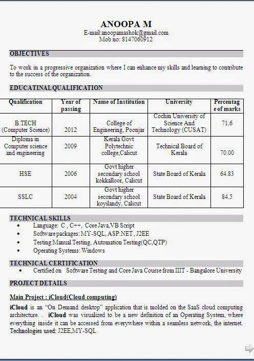 curriculum vitae of Beautiful Excellent Professional Curriculum