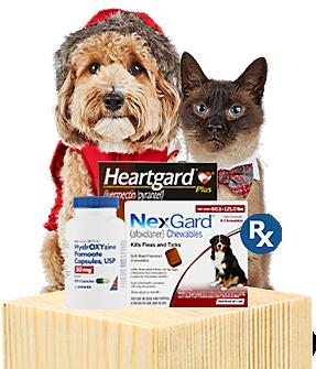 Pet Supplies Pet Food And Pet Products Petco Pets Food Animals Pet Supplies