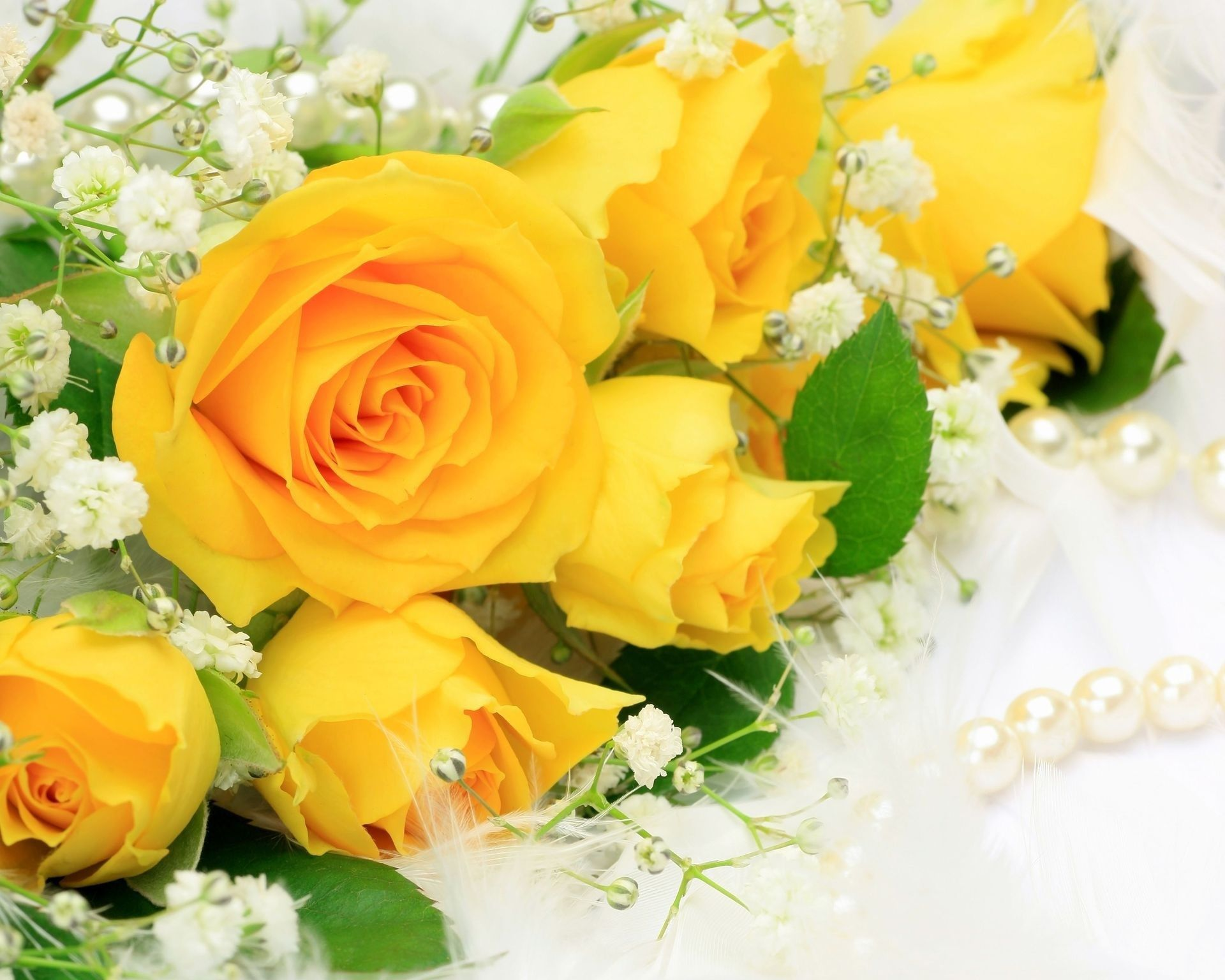 yellow roses #982584 | nothin' but yellow ~~ | pinterest | yellow
