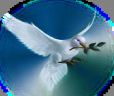 Dasc Dove Logo4 Full Png 396 334 Dove With Olive Branch White Doves Doves