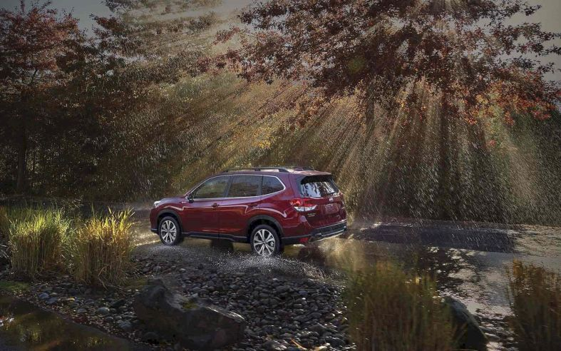 The 2019 Subaru Forester The SUV for All You Love