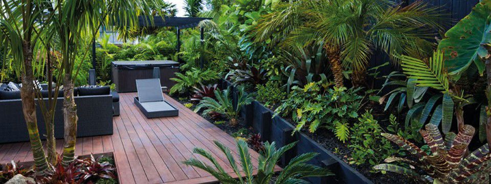 New zealand tropical gardens google search gardens for Native garden designs nz