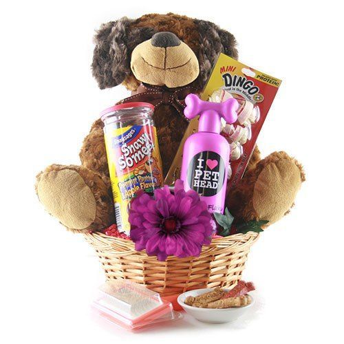 Do it yourself gift basket ideas for any and all occasions parent darling new pet ownerparent gift basket ideas do it yourself gift baskets ideas solutioingenieria Images