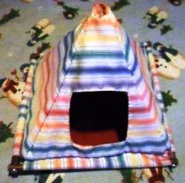 Ferret Tent & Ferret Tent   Ferret Stuff   Pinterest   Ferret