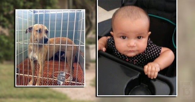 Attorney wants answers in case of foster baby killed by ...