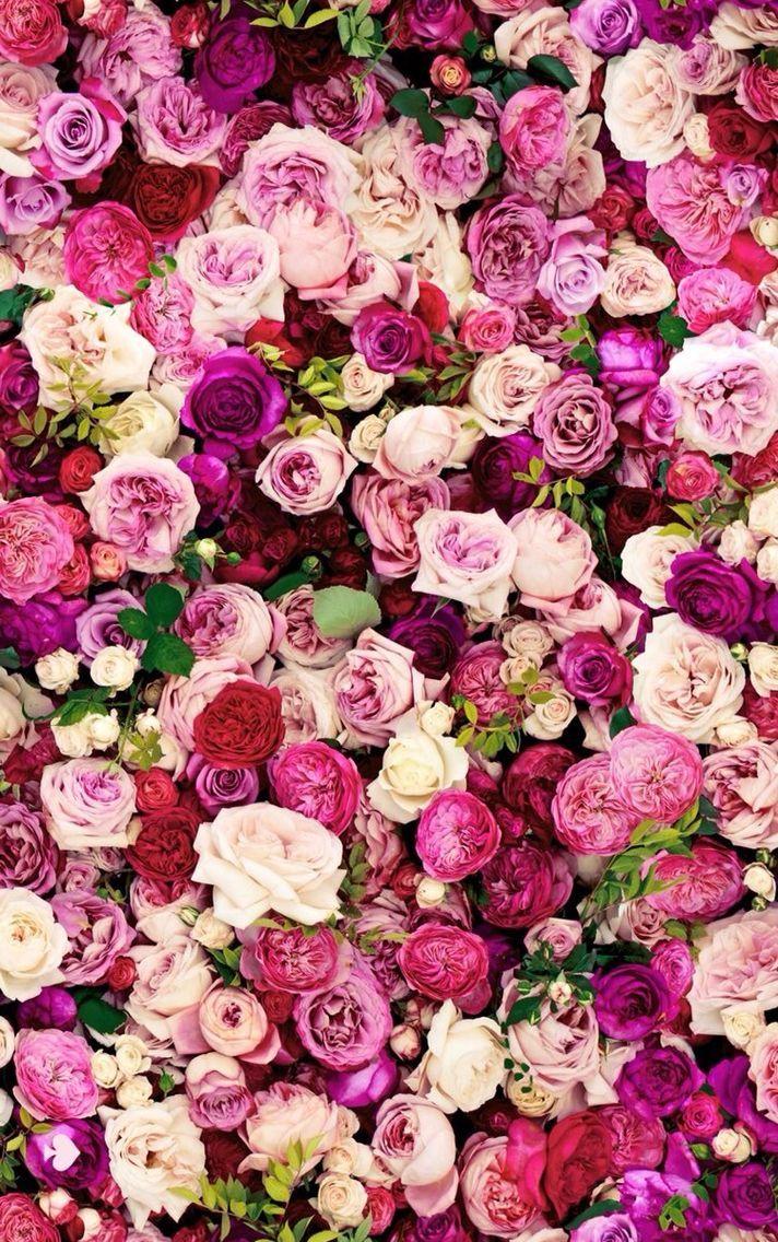 Floral Wallpaper Pinterest バラの壁紙 美しい花 花 壁紙