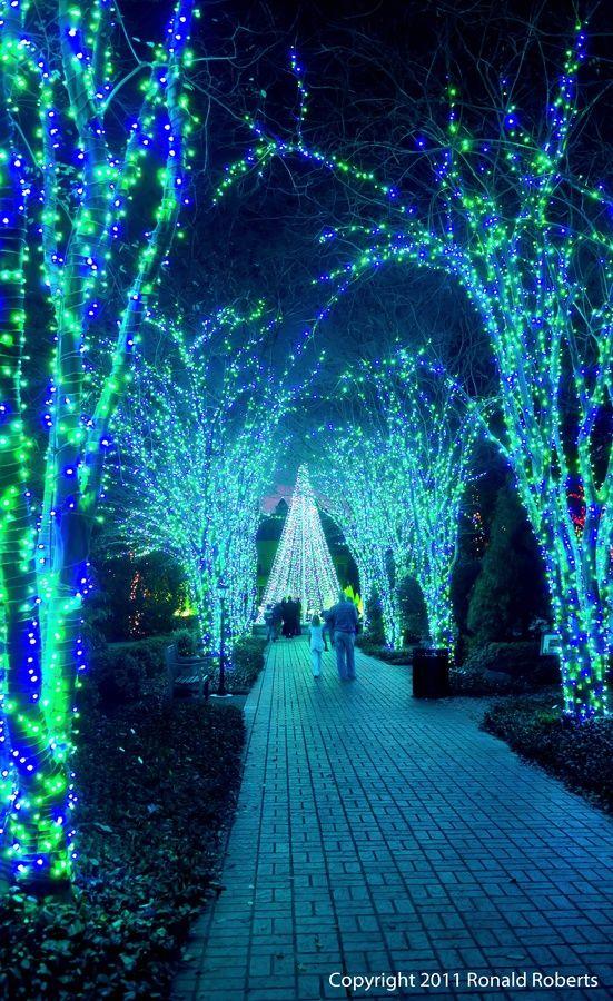 Atlanta Botanical Gardens Holiday Lights Atlanta Georgia This