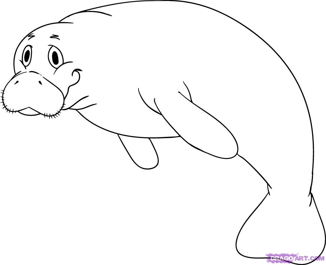 How To Draw A Cartoon Manatee By Dawn Animal Coloring Pages