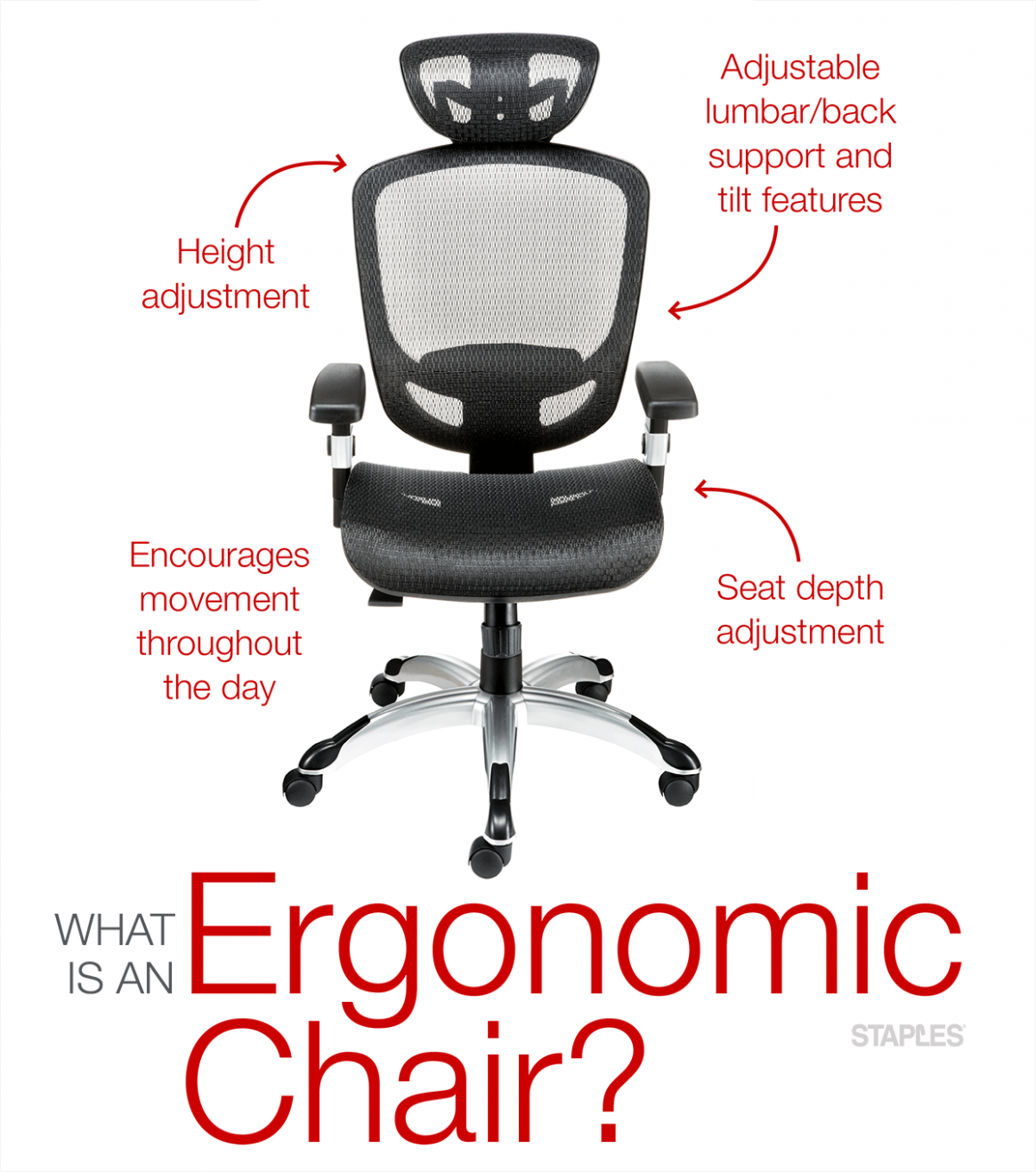 15 Unconventional Knowledge About Ergonomic Features Of A Chair