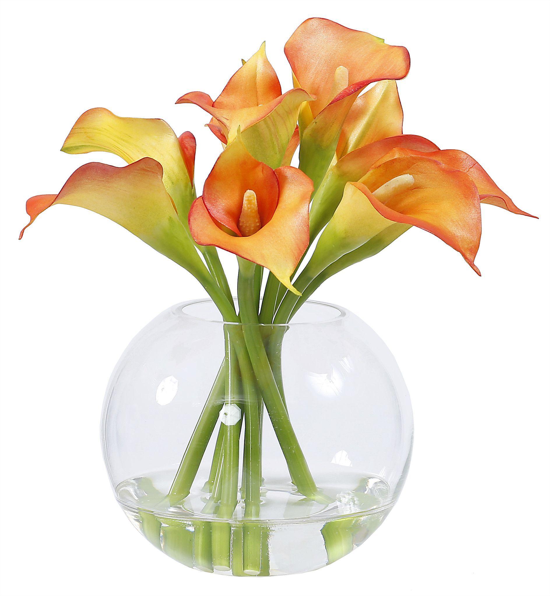 Calla lily in glass 11 calla lilies calla lily in glass 11 reviewsmspy