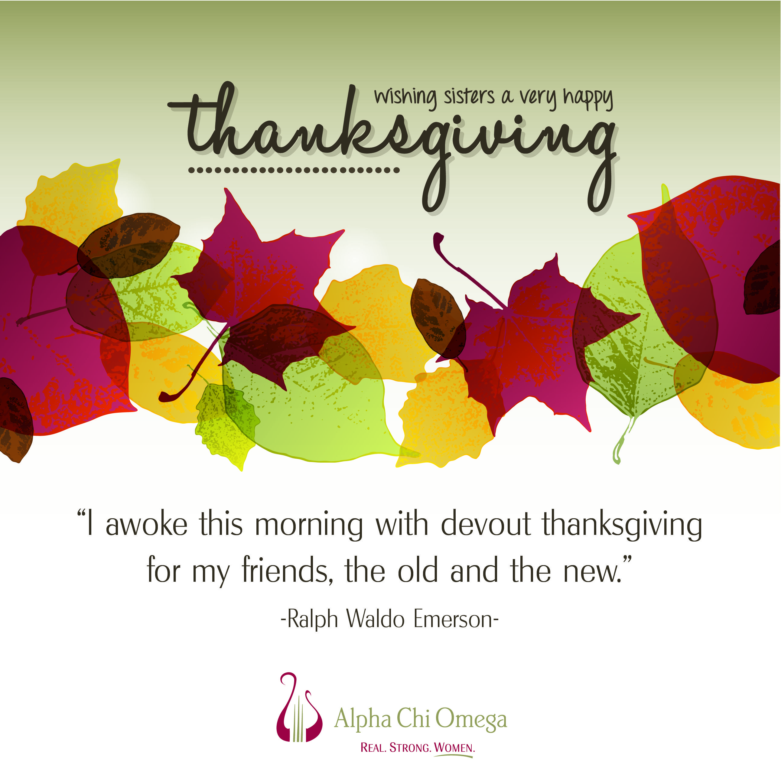 Happy Thanksgiving to all Alpha Chi Omega sisters! | College ...