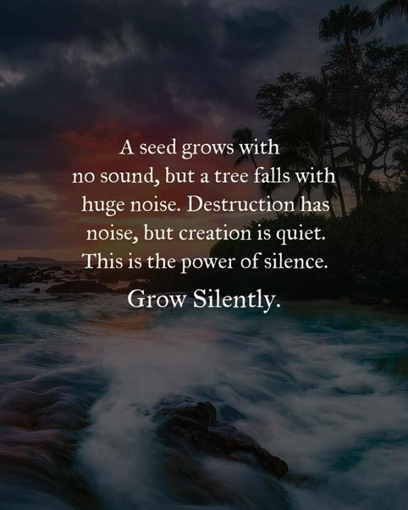 A seed grows with no sound.. Brave quotes, Positive