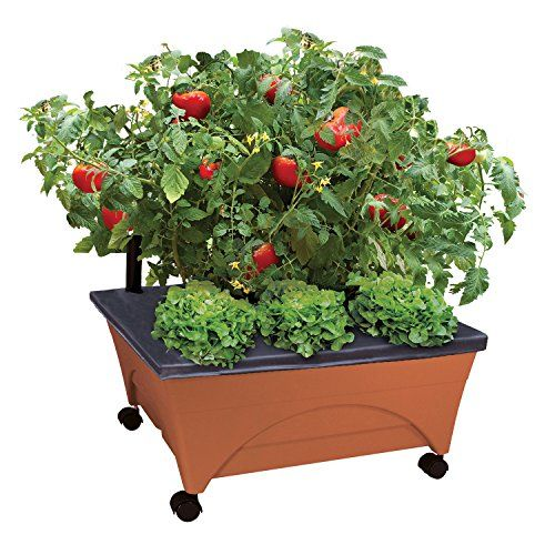 Emsco Group City Picker Raised Bed Grow Box
