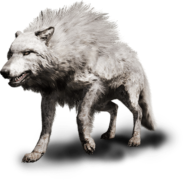 Far Cry Primal Animals Beast Mastery Ubisoft Us Wolf A