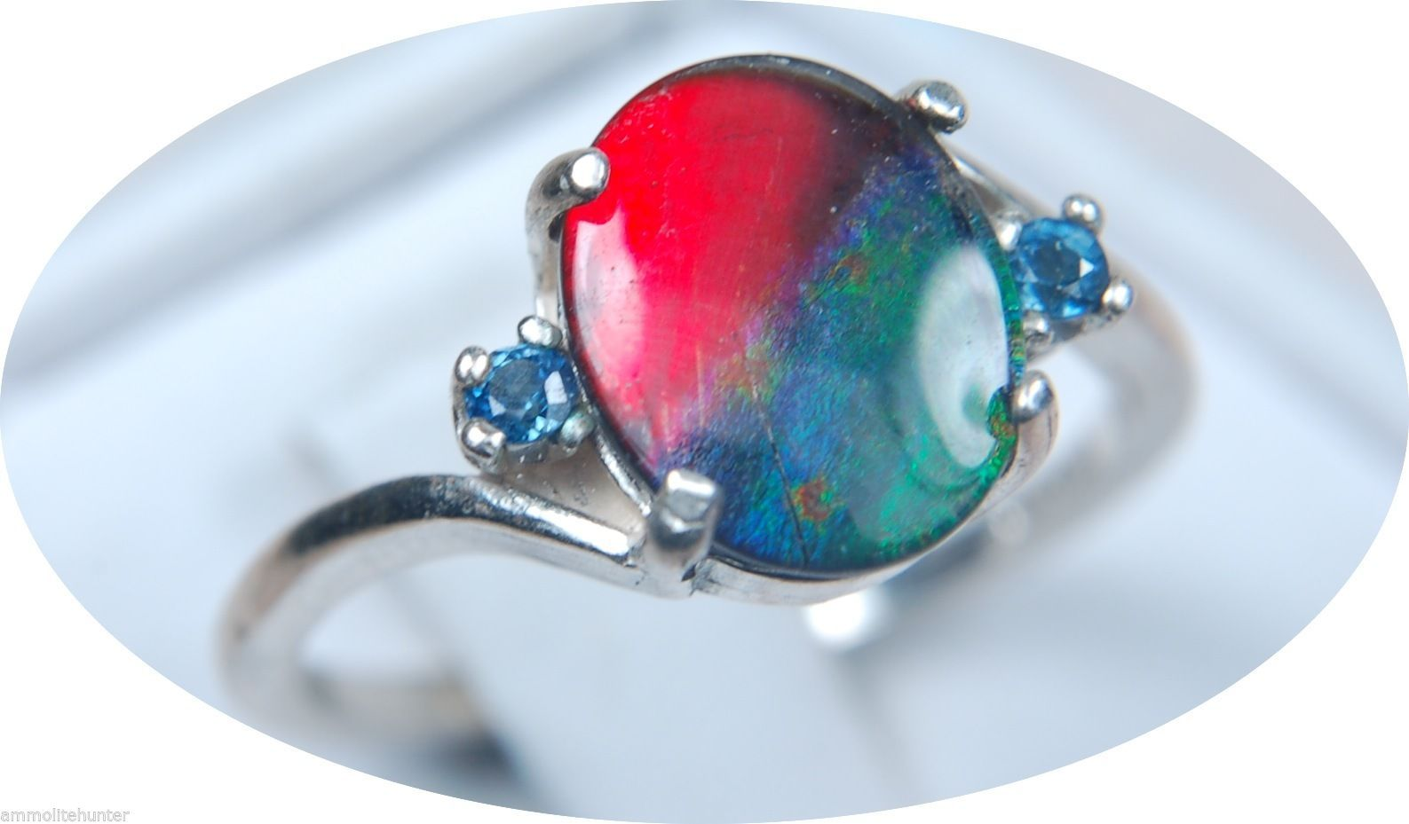 10x8mm Ammolite Ring Natural Sapphires Great Feng Shui Solid 925 Sterling Silver | eBay