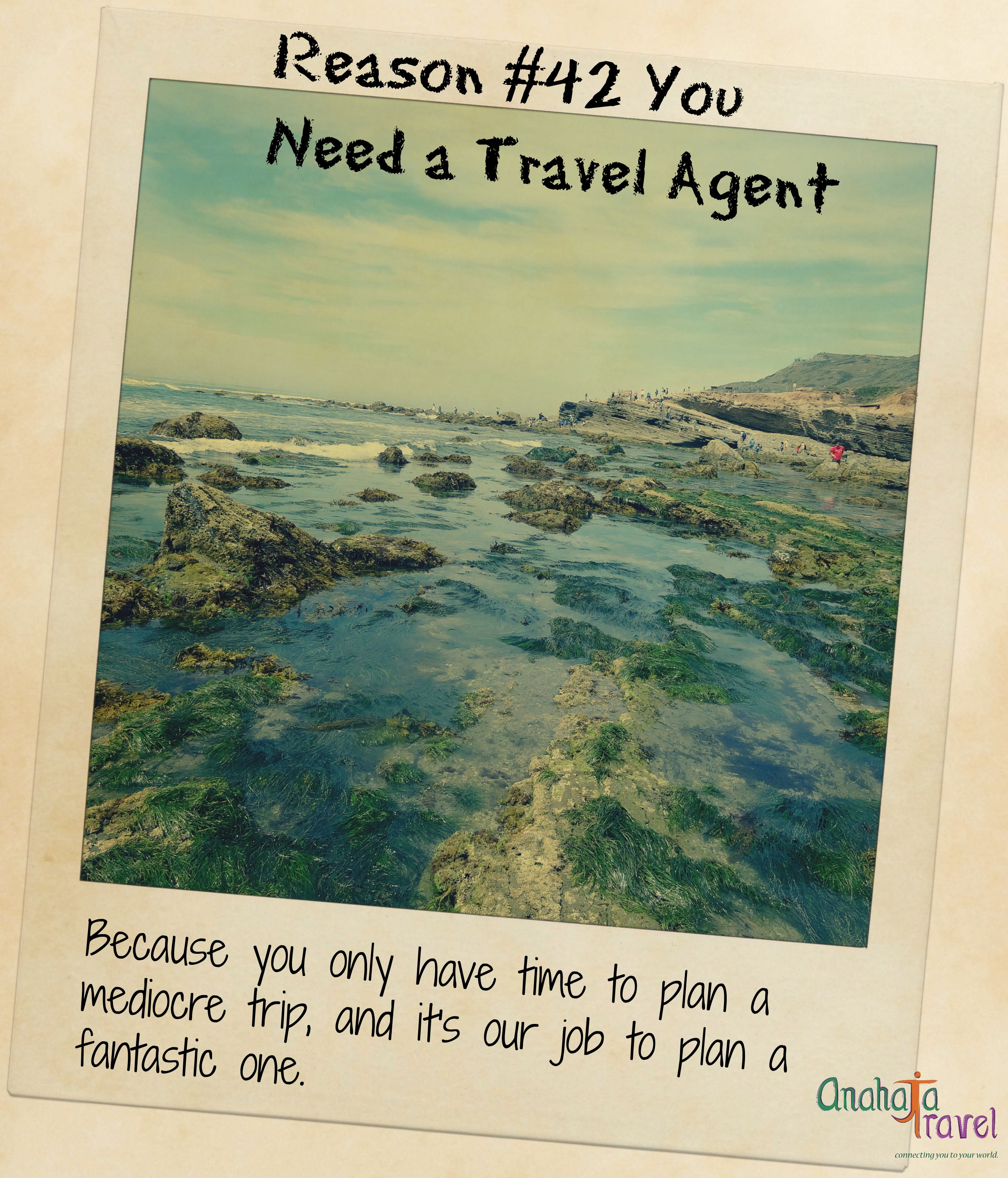 Reason 42 You Need A Travel Agent Travel Agent Become A Travel