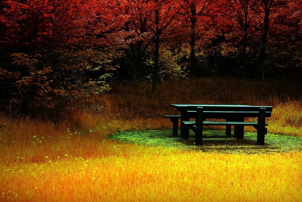 Hd 3d Wallpapers 1080p Widescreen Natural And Landscape Autumn