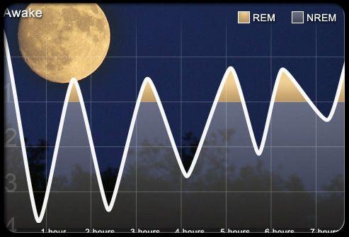 A sleep cycle graph.