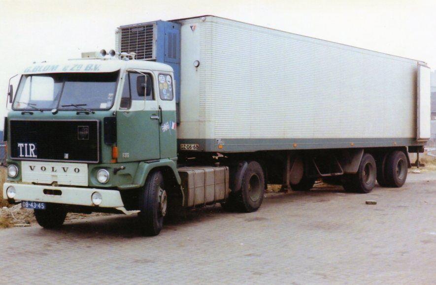 img359.jpg