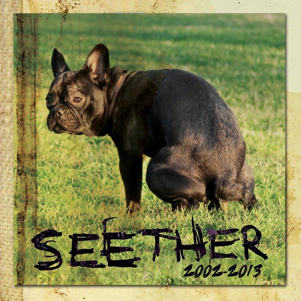 Seether 20032013 Full Album Spotify, Spotify playlist
