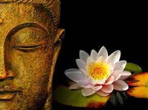 Buddha Face With Lotus Flower Hd Wallpaper Wall In 2019 Buddhism