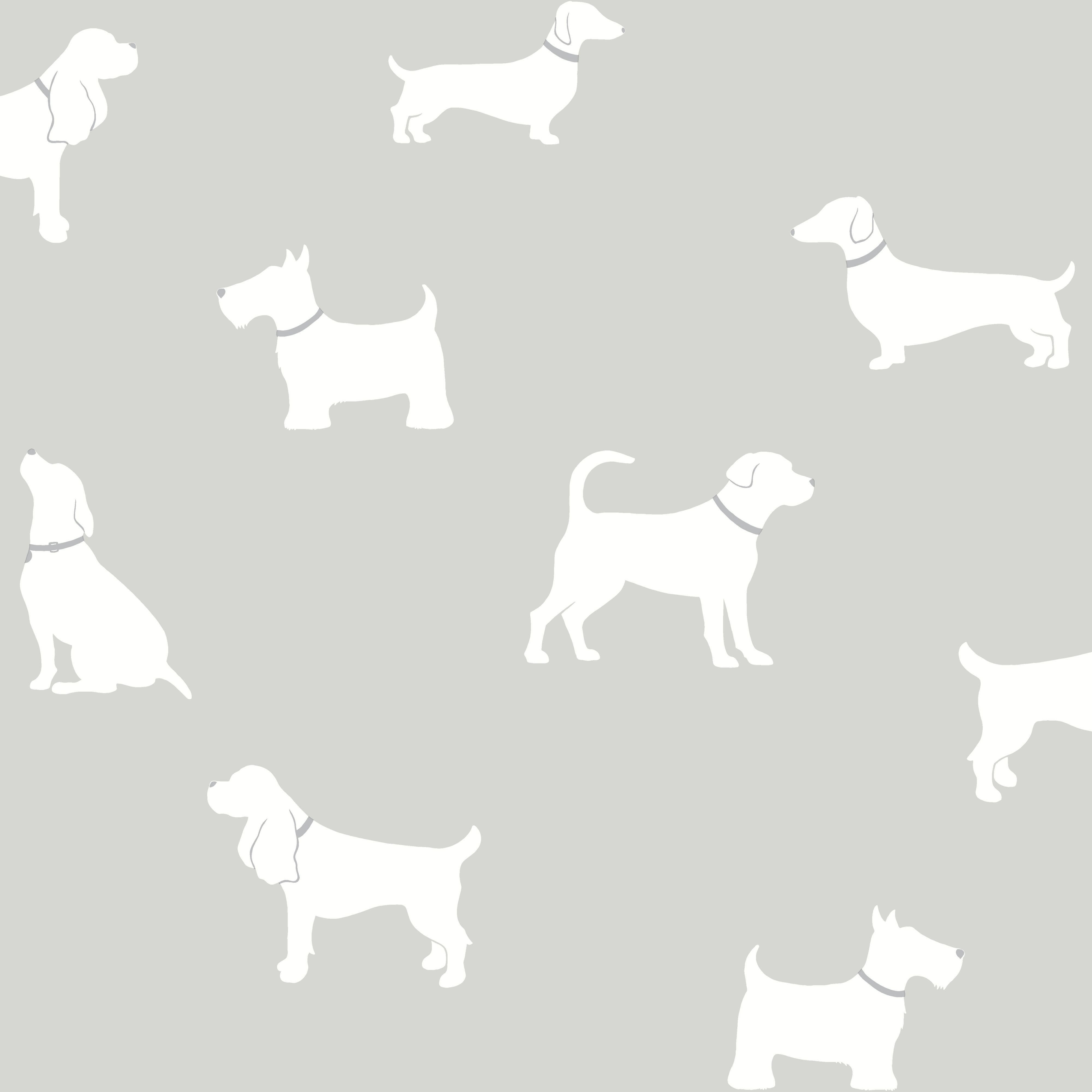 colours pooch grey dogs mica effect wallpaper wallpaper. Black Bedroom Furniture Sets. Home Design Ideas