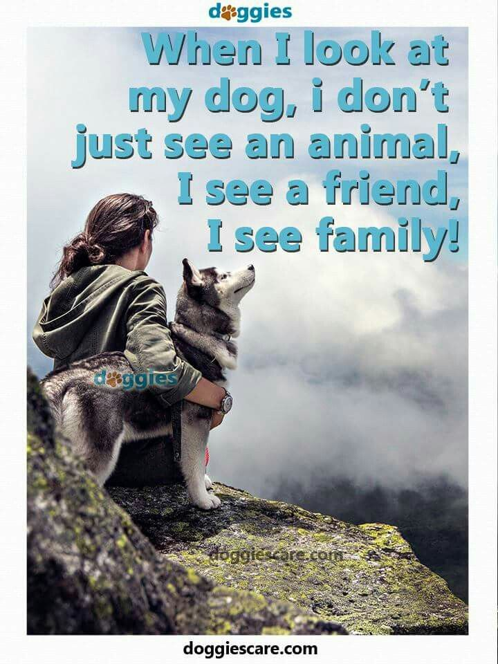 I think as my dog as a Faroe dog and part of my family