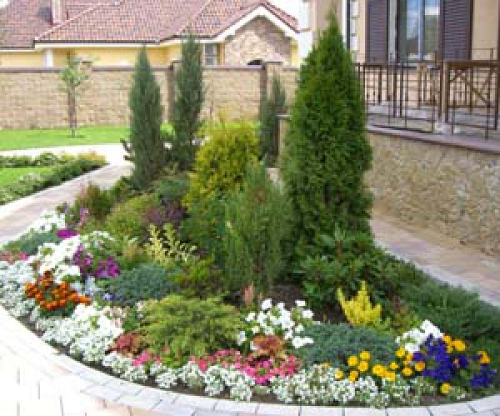Цветники и клумбы своими руками на даче фото цветущее всё лето фото