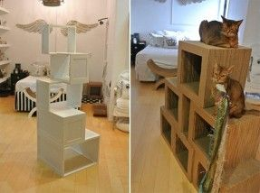 Cat Climbing Shelves Cat Trees Catification San Diego Cat Climbing Shelves Cat Furniture Pet Diy Projects