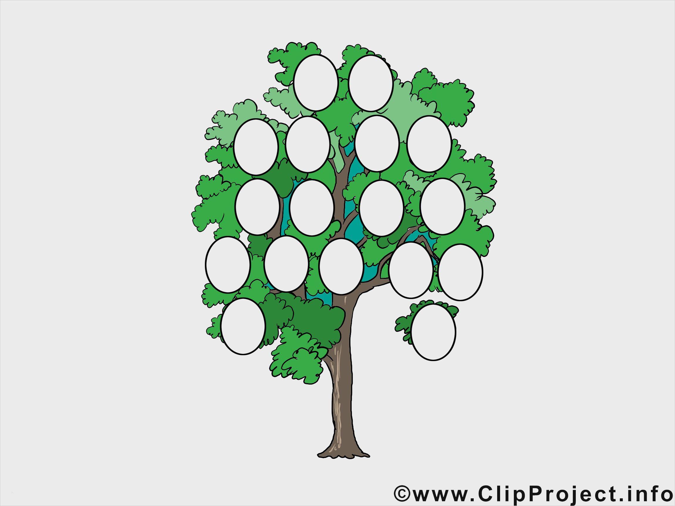 Luxus Vorlage Familienstammbaum Kostenlos Stilvoll Solche Konnen Einstellen Fur Ihre Kreativi In 2020 Stammbaum Vorlage Familienstammbaum Erstellen Lebenslauf