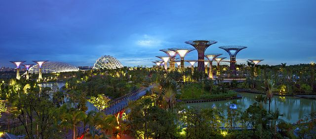 3f49409d164708756c96fae871b1a713 - Fun Facts About Gardens By The Bay