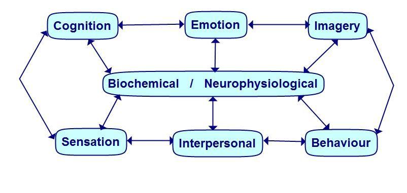 BASIC-ID: Behavior, Affective Responses, Sensations, Imagery