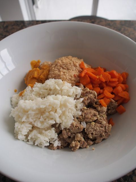 Organic homemade dog food recipe 2lbs lean ground chicken 2 cups organic homemade dog food recipe 2lbs lean ground chicken 2 cups cooked white rice 3 forumfinder Image collections