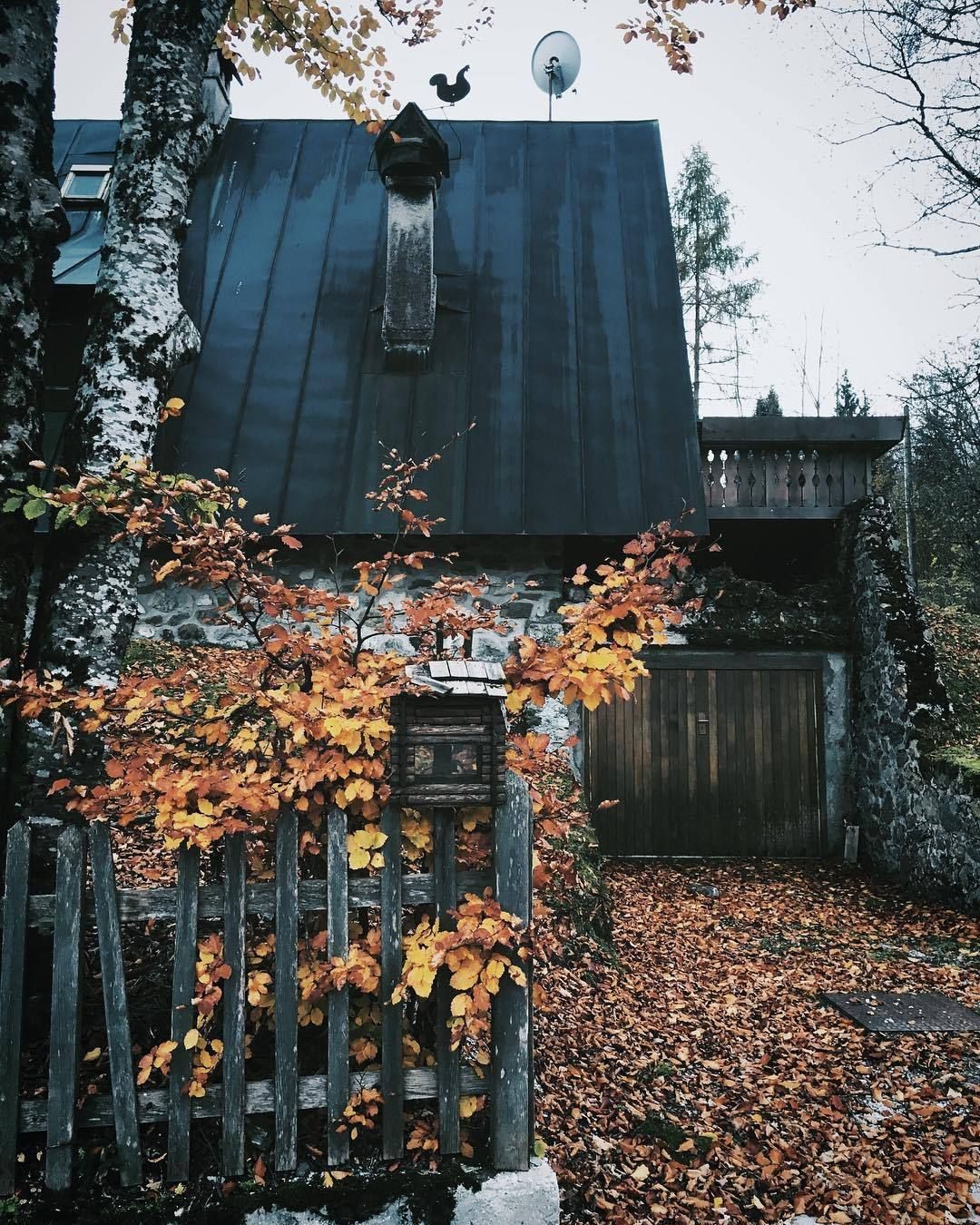 Witch Cottage #witchcottage Witch Cottage #witchcottage