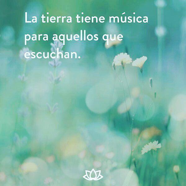 La tierra tiene música para aquellos que escuchan. #Meditacion #Zen #PazInterior #Yoga #Conciencia #Calma #Mente #Yoguini #Meditar #Medita #Meditando #Budismo #Yoguin