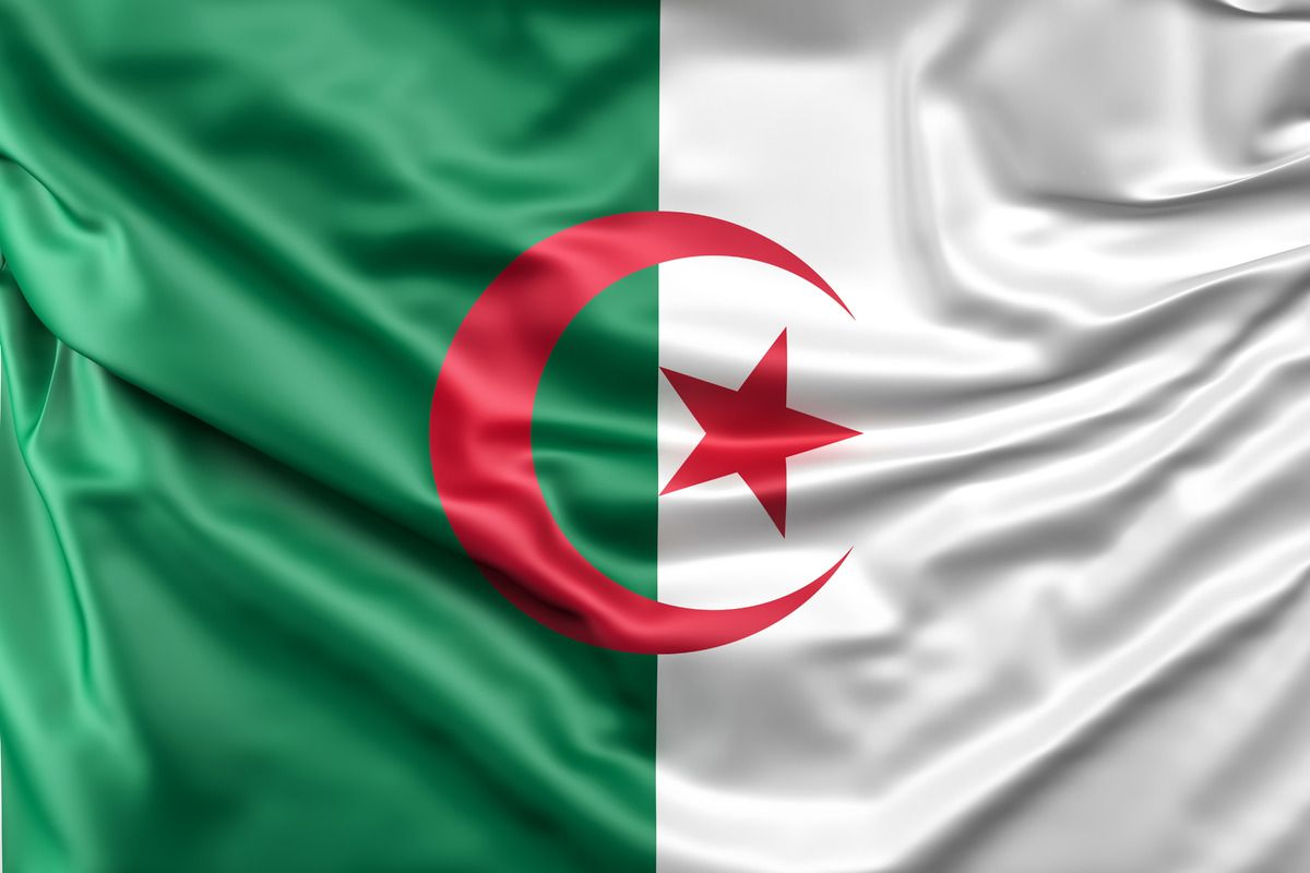 Pin By Hamidi Amine On Drapeau Algerie Flag Arab Culture Algeria
