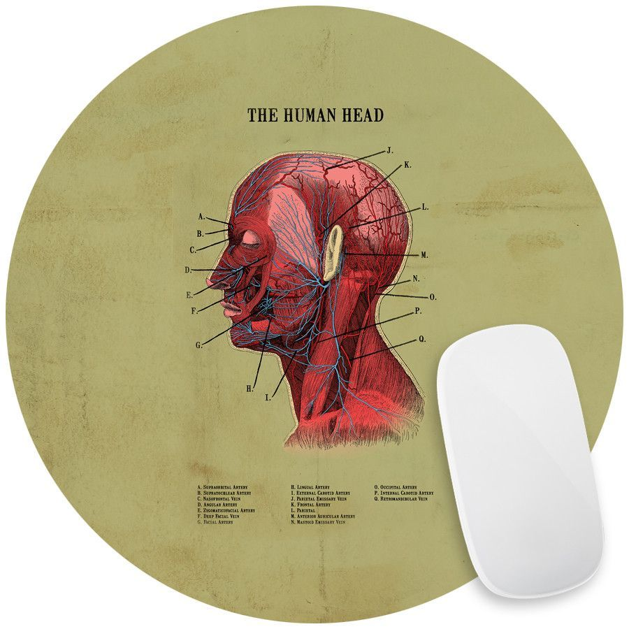 The Human Head Mouse Pad Decal | Human head, Mice and Products