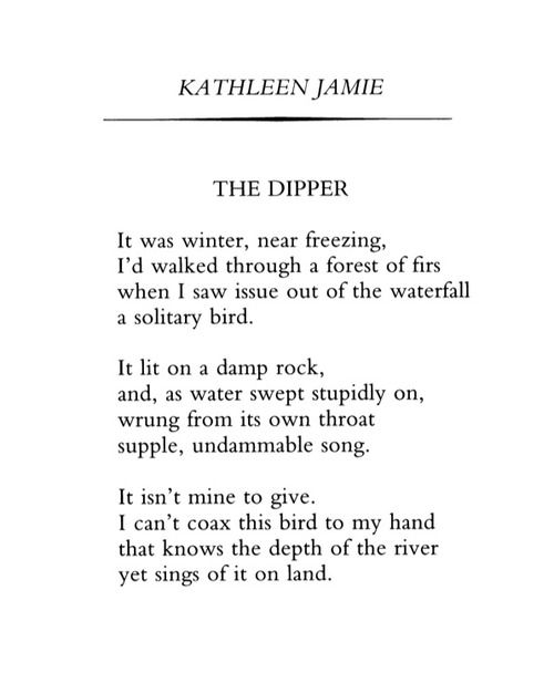 Poetry Since 1912 Kathleen Jamie June 2004 At The Writing Short Verse Quotes Baraka Essay Analysi