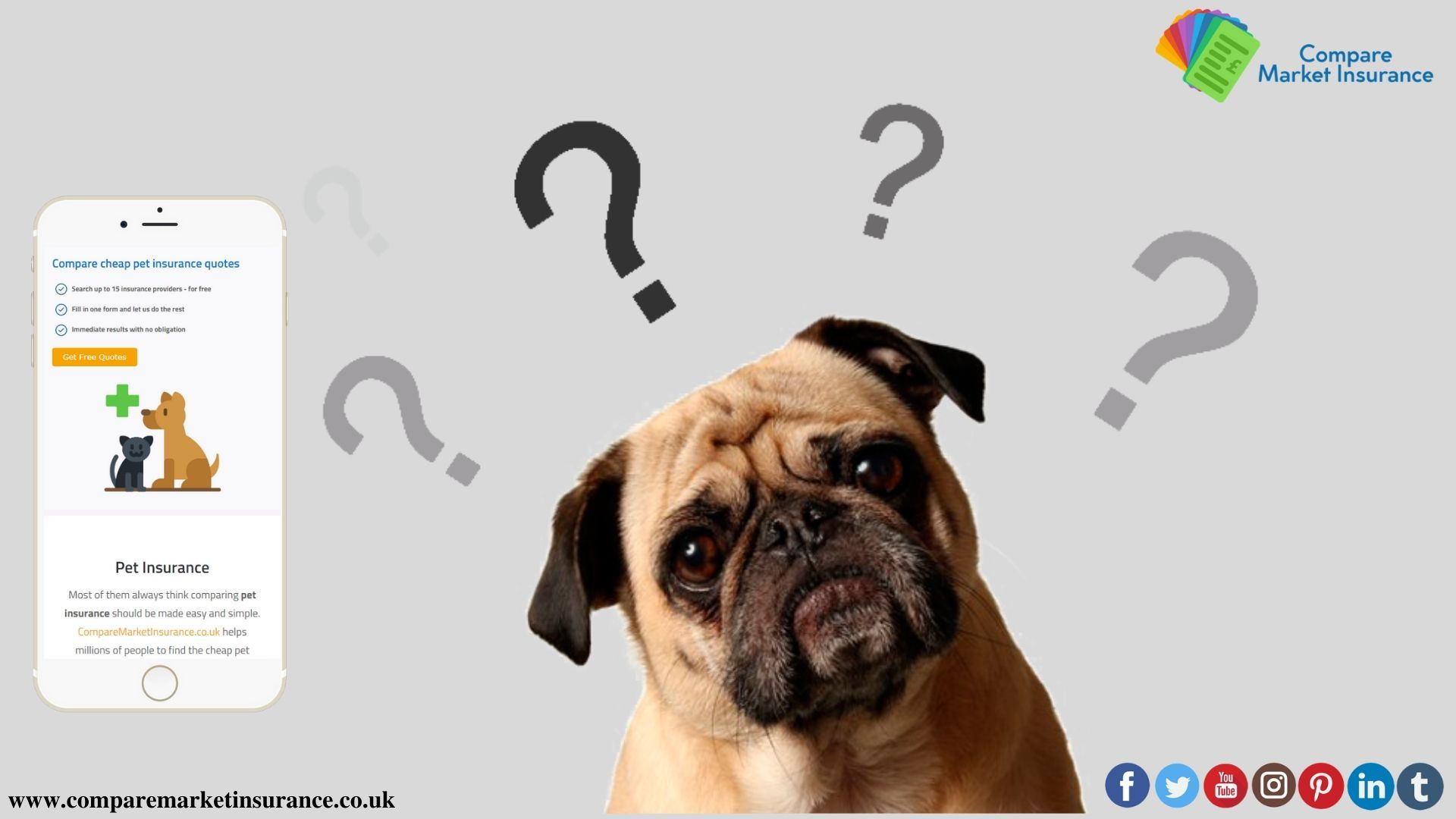 As the age of the pet increases the pet insurance premium