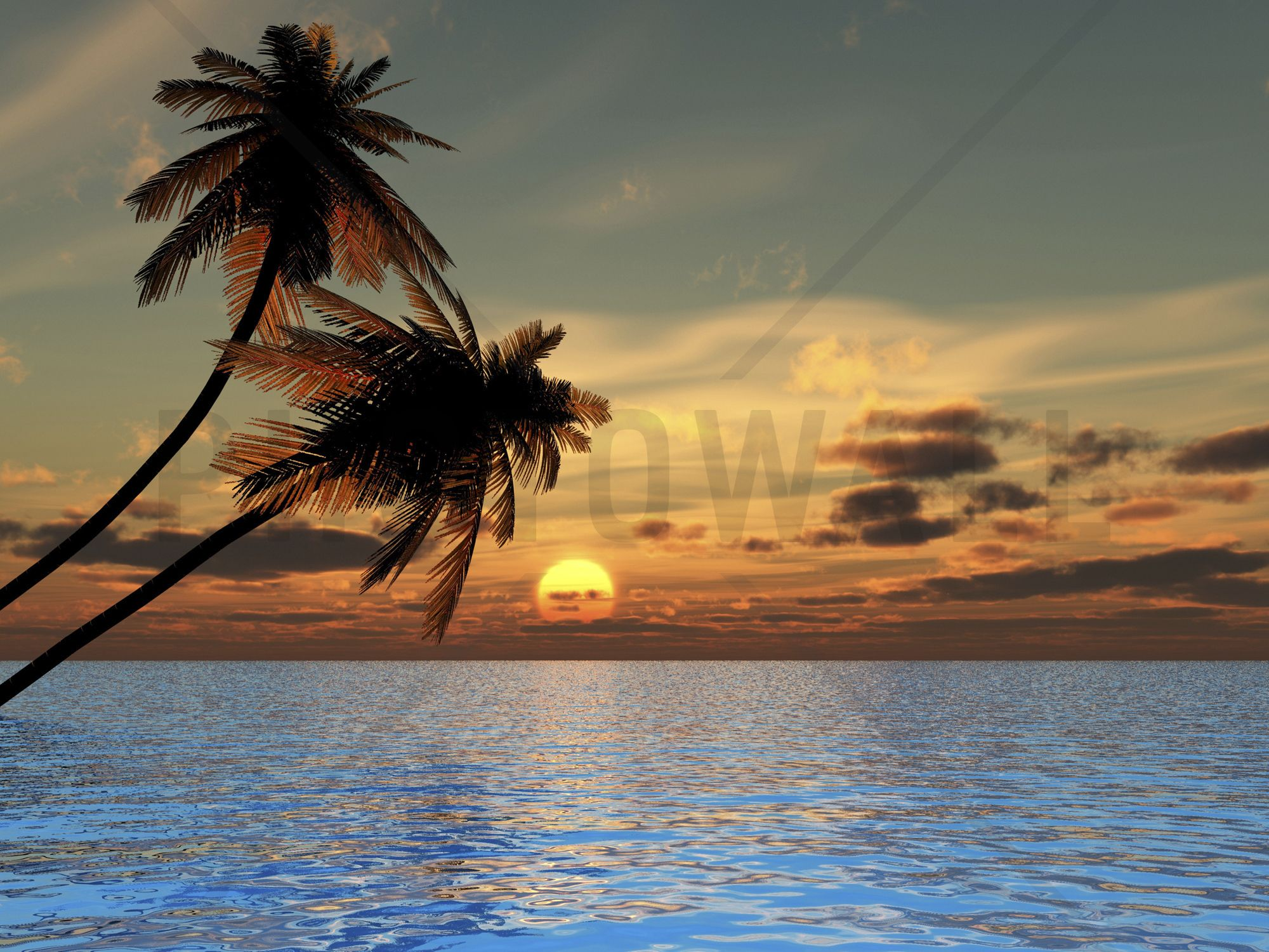 Coconut Palm Sunset Wall Mural & Photo Wallpaper