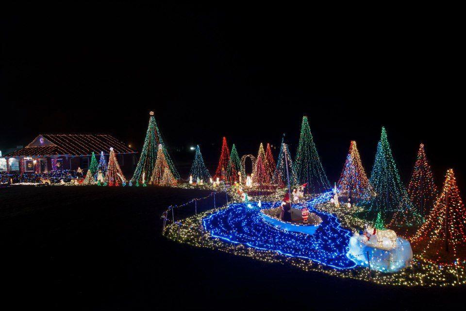Nice mega trees with pond Christmas Display Ideas Pinterest