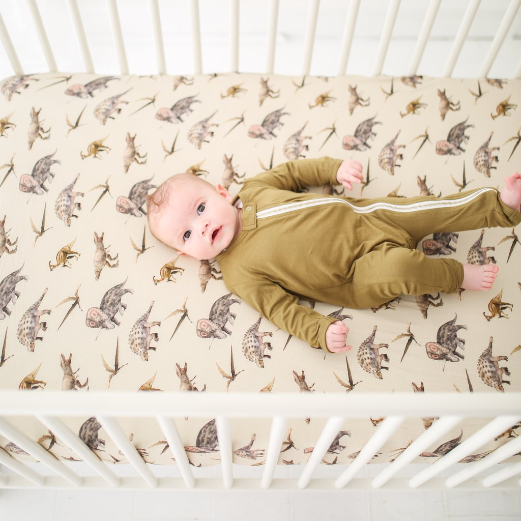 Vintage Dino Crib Sheet