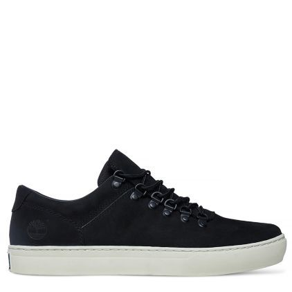 0bc9ea27082a7 Shop Men's Adventure 2.0 Cupsole Alpine Oxford today at Timberland. The  official Timberland online store. Free delivery   free returns.